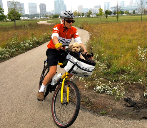 Thisis me riding with my dog on a summer day with Chicago in the background