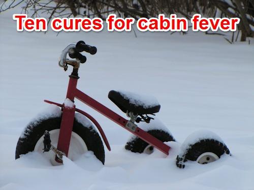 cabin-fever-pinterest-badge