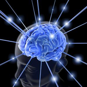 r4_light-brain