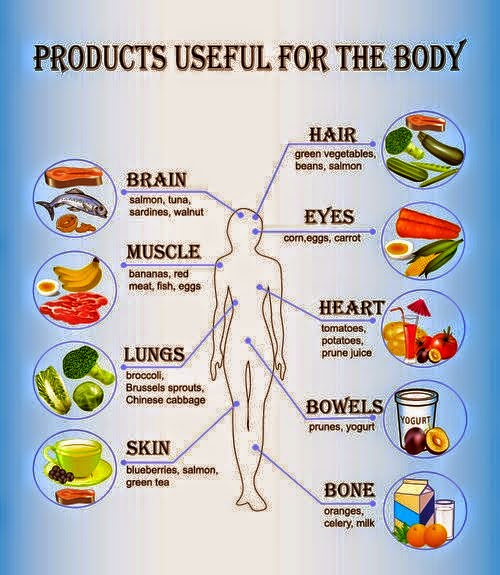 How Various Foods Benefit Your Body Infographic One