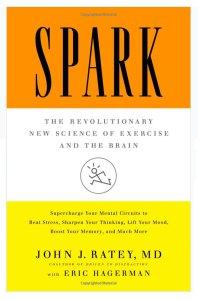 spark-book