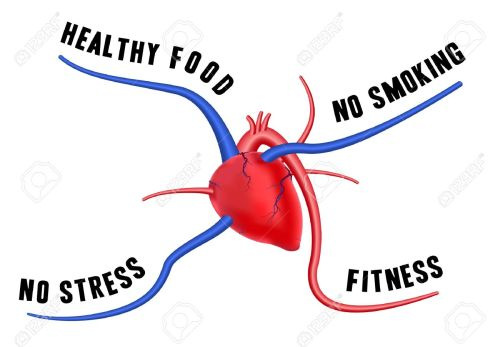 18531286-The-diagram-shows-four-tips-for-a-healthy-heart-The-concept-of-long-life-Stock-Vector.jpg