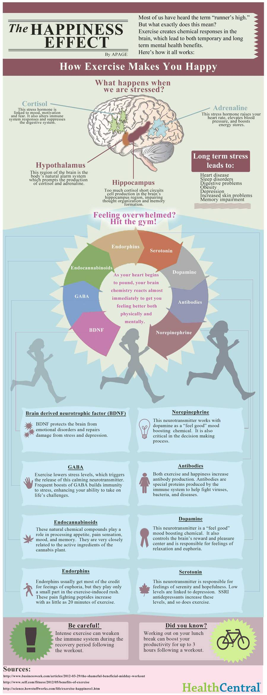 ExerciseHappiness_infograph_0.jpg