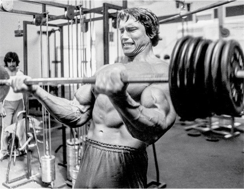 arnold-blueprint-cut-training-graphics-3.jpg
