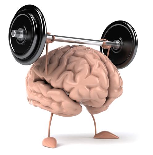 muscle_brain