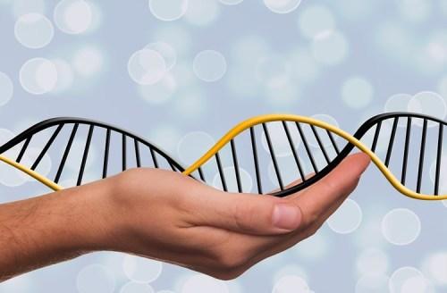 vitamin-d-genetics-aging-neurosceincenews-public.jpg