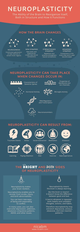 NICABM-Neuroplasticity-Infographic-1.jpg
