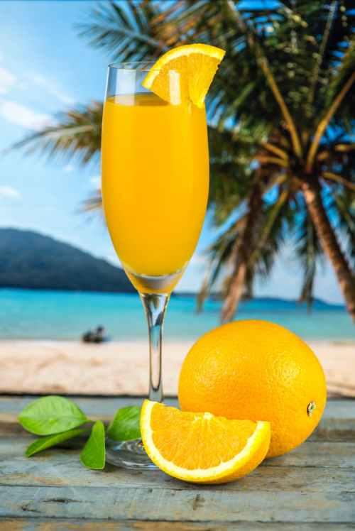 sliced orange fruit beside long stemmed glass filled with orange liquid