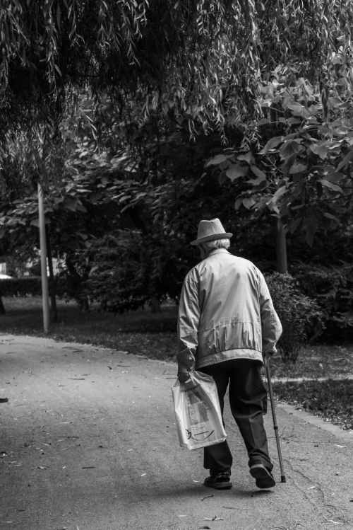 grayscale back view photo of elderly man with cane walking on dirt road