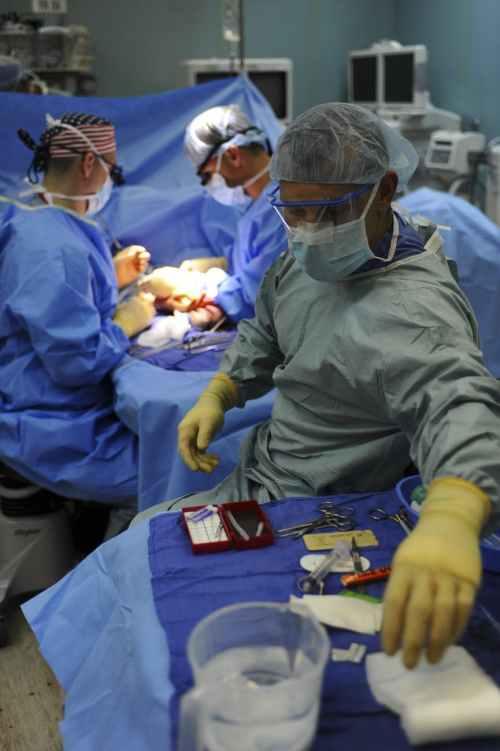 adult doctors gloves health