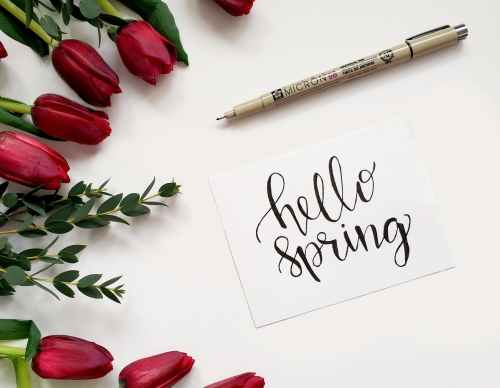 hello spring handwritten paper