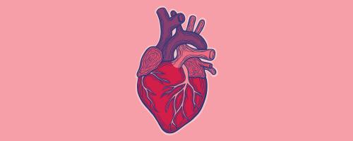 ts-heart-1800x720-x.png