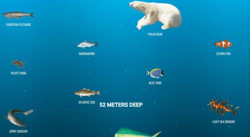 Amazing Website Alert: The Deep Sea by Neal Fun